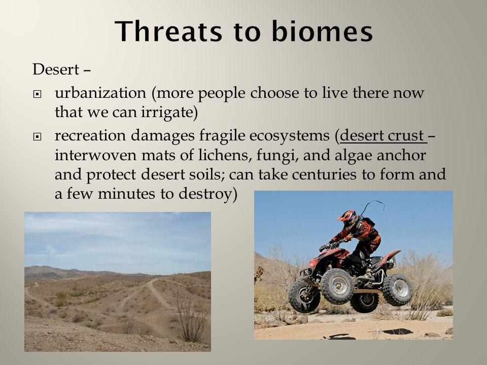 Chapter 6 Terrestrial Biomes Ppt Video Online Download