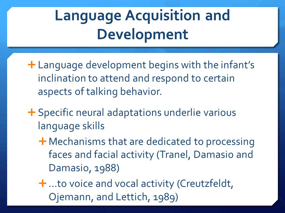 Language Development From A Biopsychological Perspective. Tattoo Signs Of Stroke. Family Name Signs Of Stroke. Garbage Truck Signs Of Stroke. Math Class Signs. Bright Yellow Signs Of Stroke. Fever Blister Signs. Trafic Signs. Tia Signs