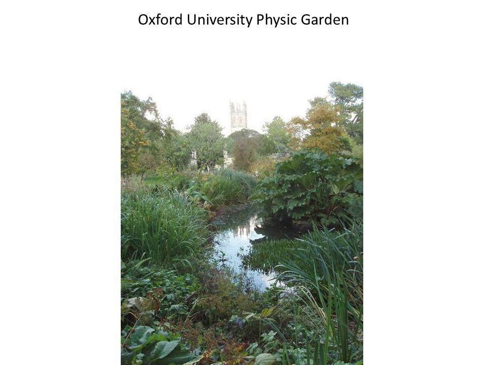 Oxford University Physic Garden