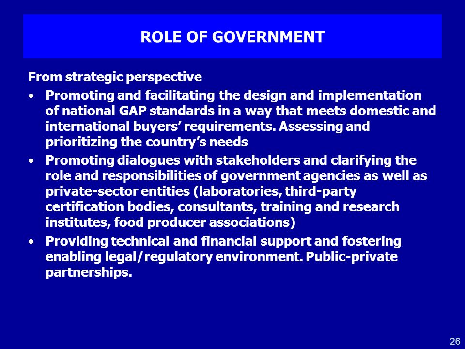 ROLE OF GOVERNMENT From strategic perspective