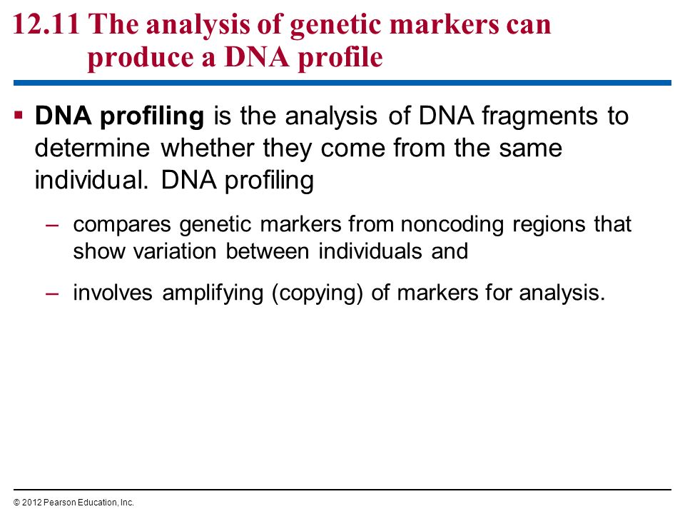 a comprehensive introduction and an analysis of the dna Instilling confidence, analytical clarity, and a sense of curiosity, this comprehensive introduction is the perfect tool for grasping the techniques and applications of forensic dna analysis and exploring the questions and issues involved in forensic science investigations purchase dr mcclintock's book at.