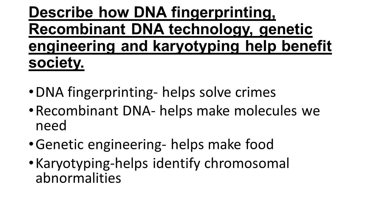 Gene Technology Notes Genomes DNA Fingerprinting Recombinant DNA – Dna Fingerprinting Worksheet