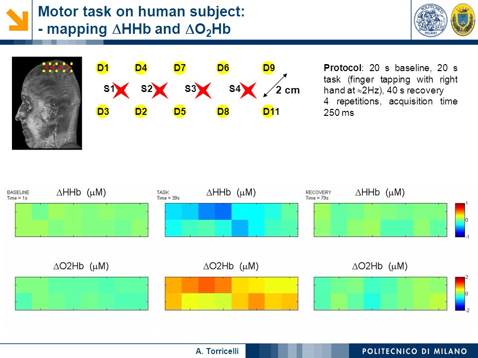 Motor task on human subject: - mapping DHHb and DO2Hb