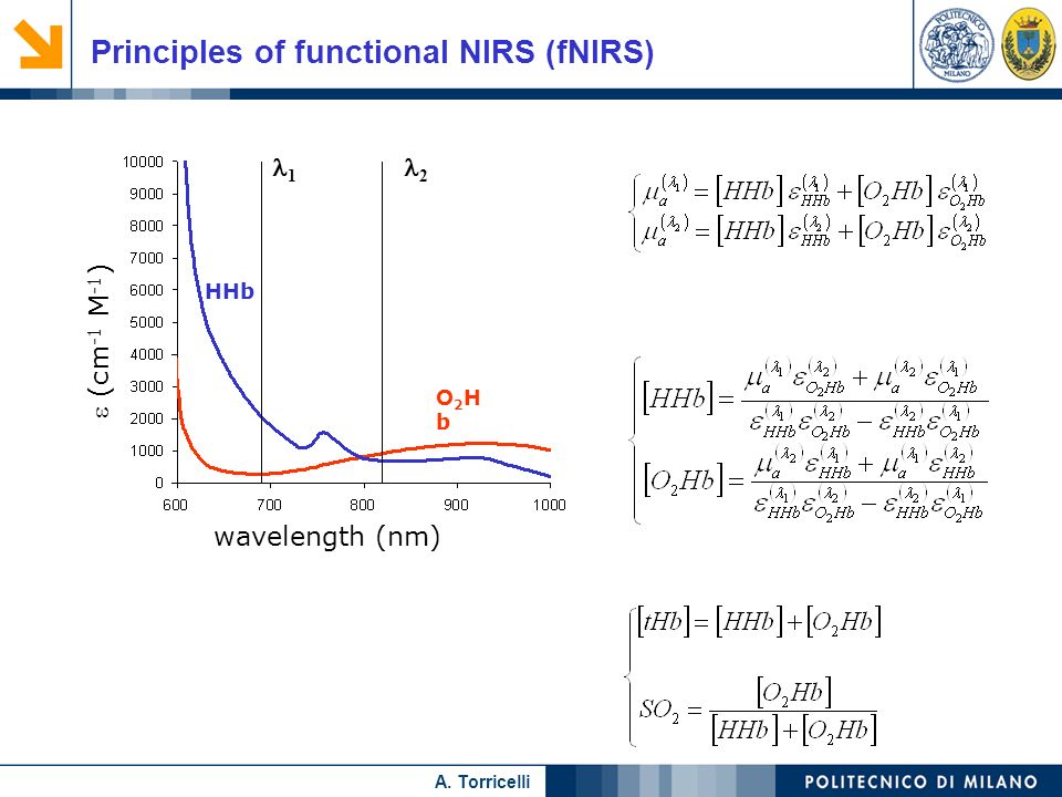 Principles of functional NIRS (fNIRS)