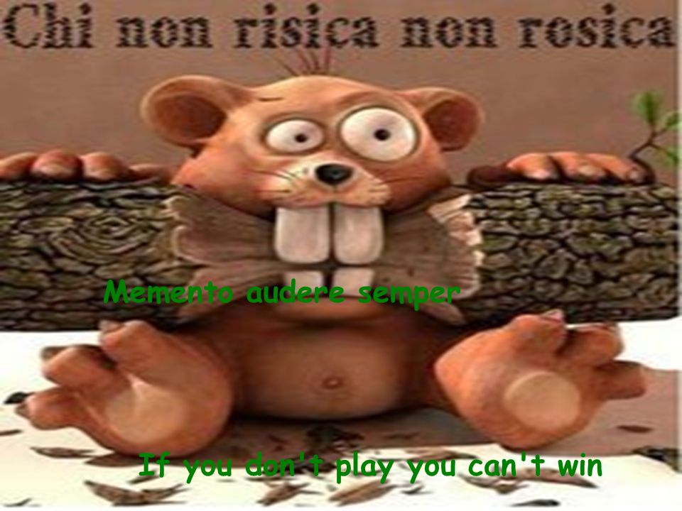 Memento audere semper If you don t play you can t win