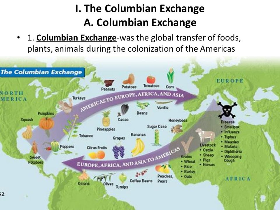 the columbian exchange and the colonization I would focus on the columbian exchange as an example of how colonization horrifically impacted the new world the idea that one side of this exchange involved the procurement of wealth and .