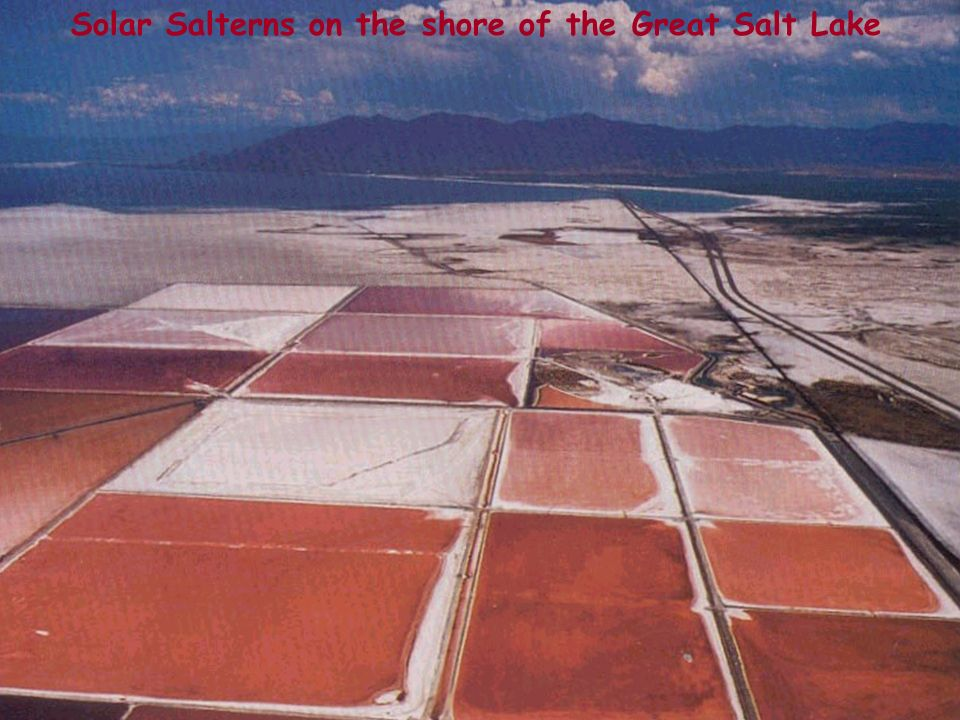 Solar Salterns on the shore of the Great Salt Lake