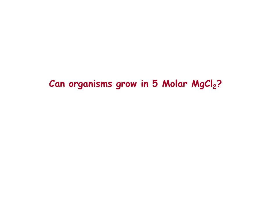 Can organisms grow in 5 Molar MgCl2