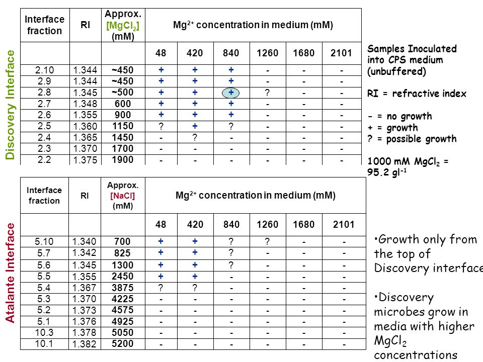 Mg2+ concentration in medium (mM)