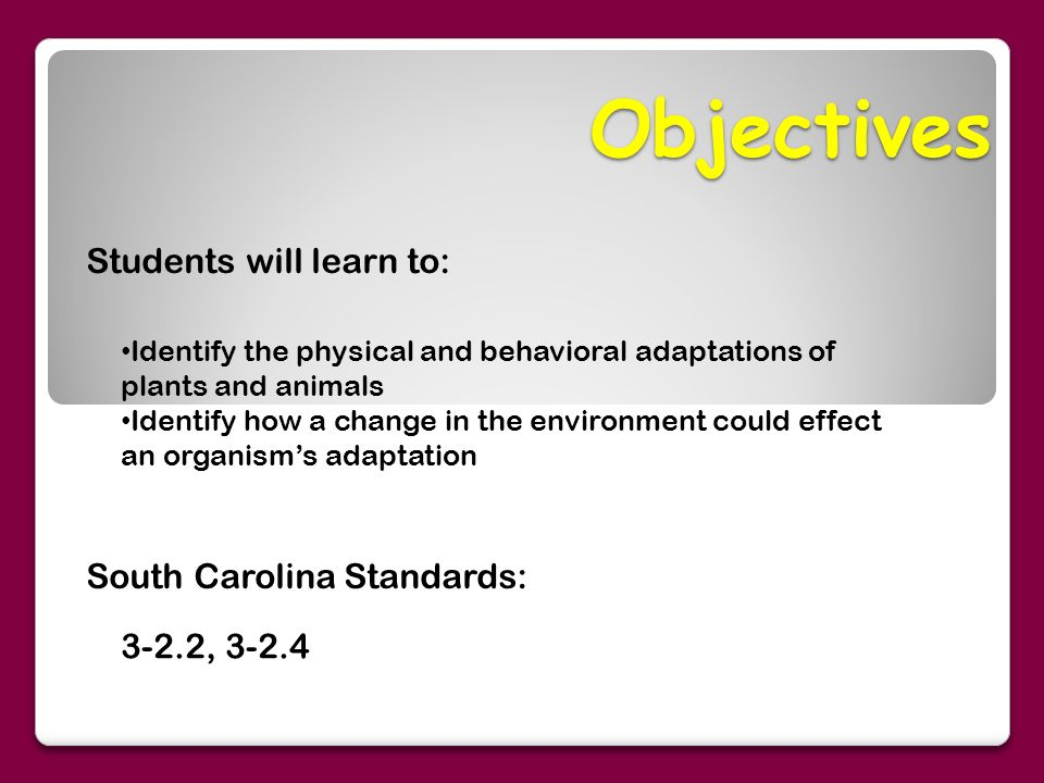 Objectives Students Will Learn To A South Carolina Standards A