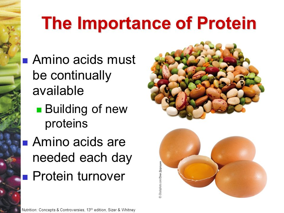 an introduction to the importance of the proteins Introduction proteins are polypeptides, which are made up of many amino acids linked together as a linear chain the structure of an amino acid contains a amino.