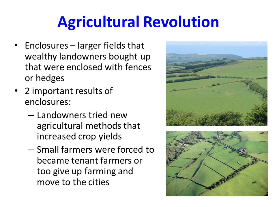 agricultural revolution 1 Re-establishing the english agricultural revolution by mark overton  1  a version of this paper was presented to the spring conference of.