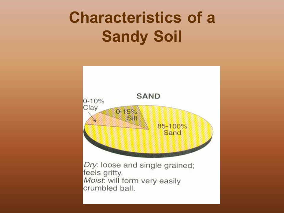 All about soil all about soil 4 7a ppt download for Characteristics of soil