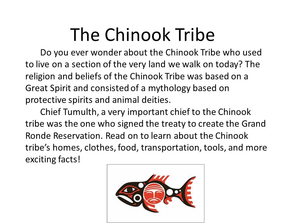 The Chinook Tribe Food, Transportation, Clothing, Tools, and ...