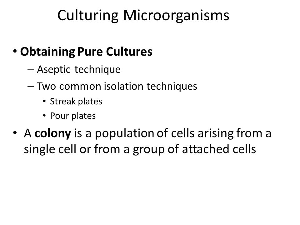 microbiology aseptic technique culturing microbes Aseptic technique & culturing microbes bacterial enumeration  microbiology is also available in a lecture-only format biol 1020 microbiology lecture (3 credits.