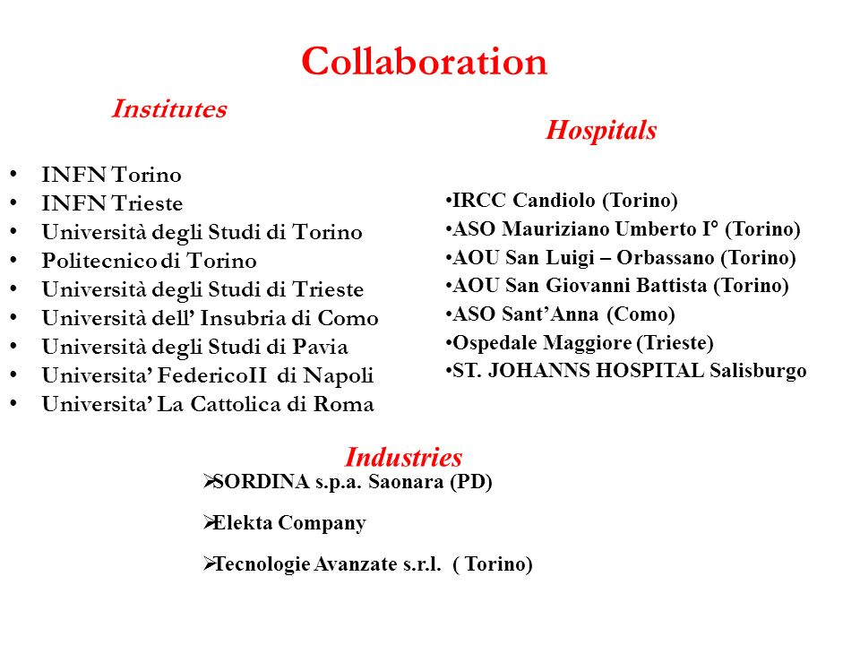 Collaboration Hospitals Industries Institutes INFN Torino INFN Trieste