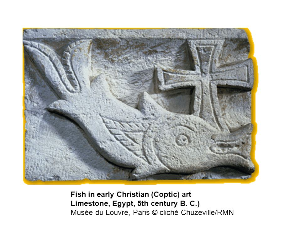 Fish in early Christian (Coptic) art Limestone, Egypt, 5th century B.