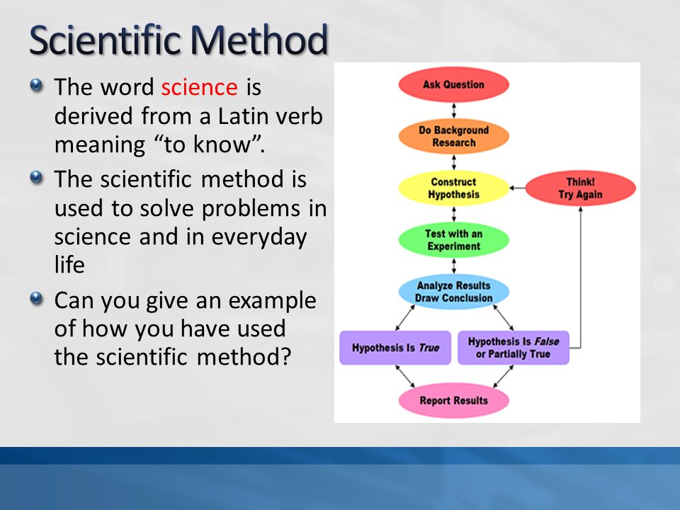what is the scientific method essay