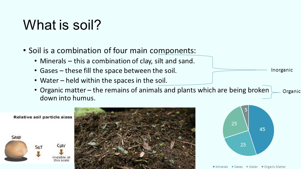 What is soil soil is a combination of four main for What is soil