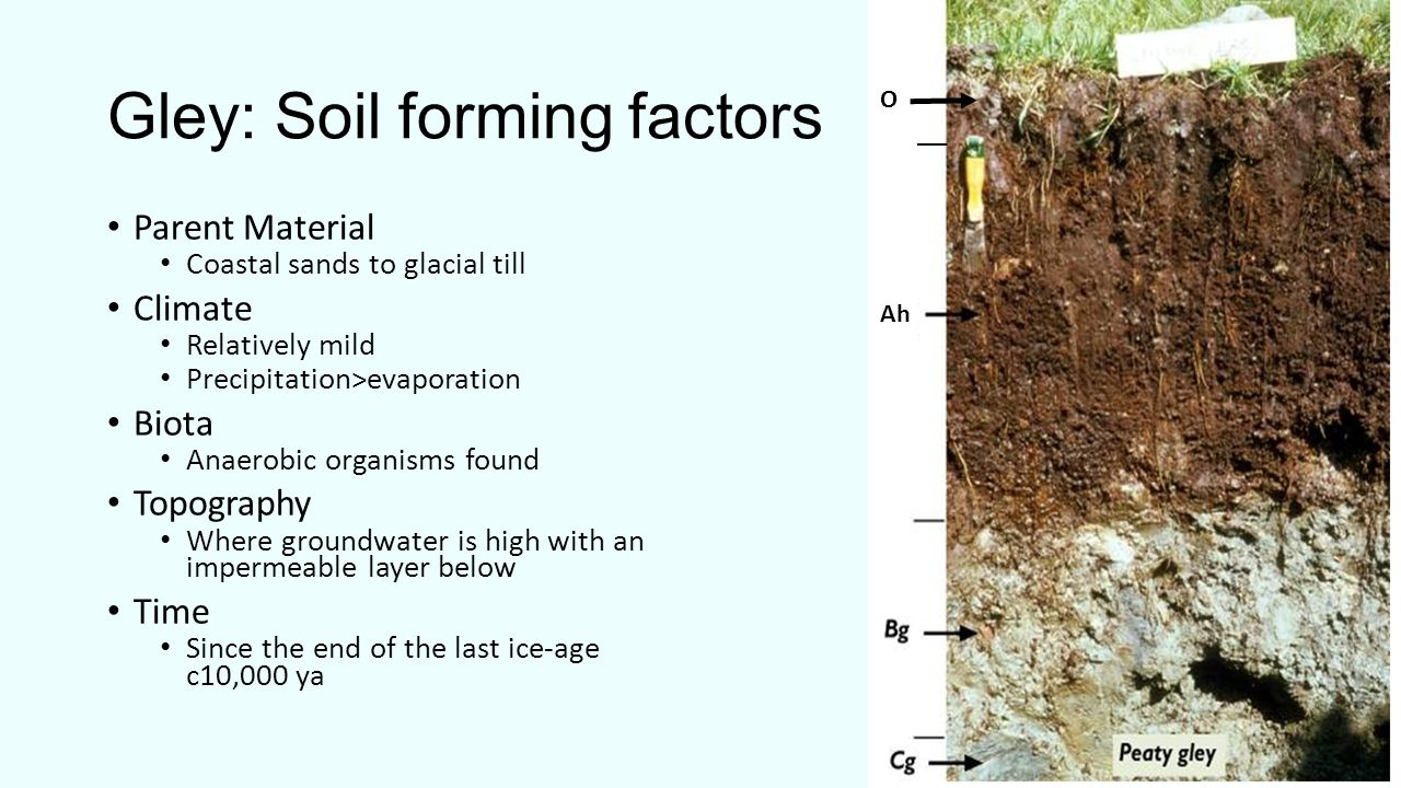 What is soil soil is a combination of four main for Meaning of soil formation