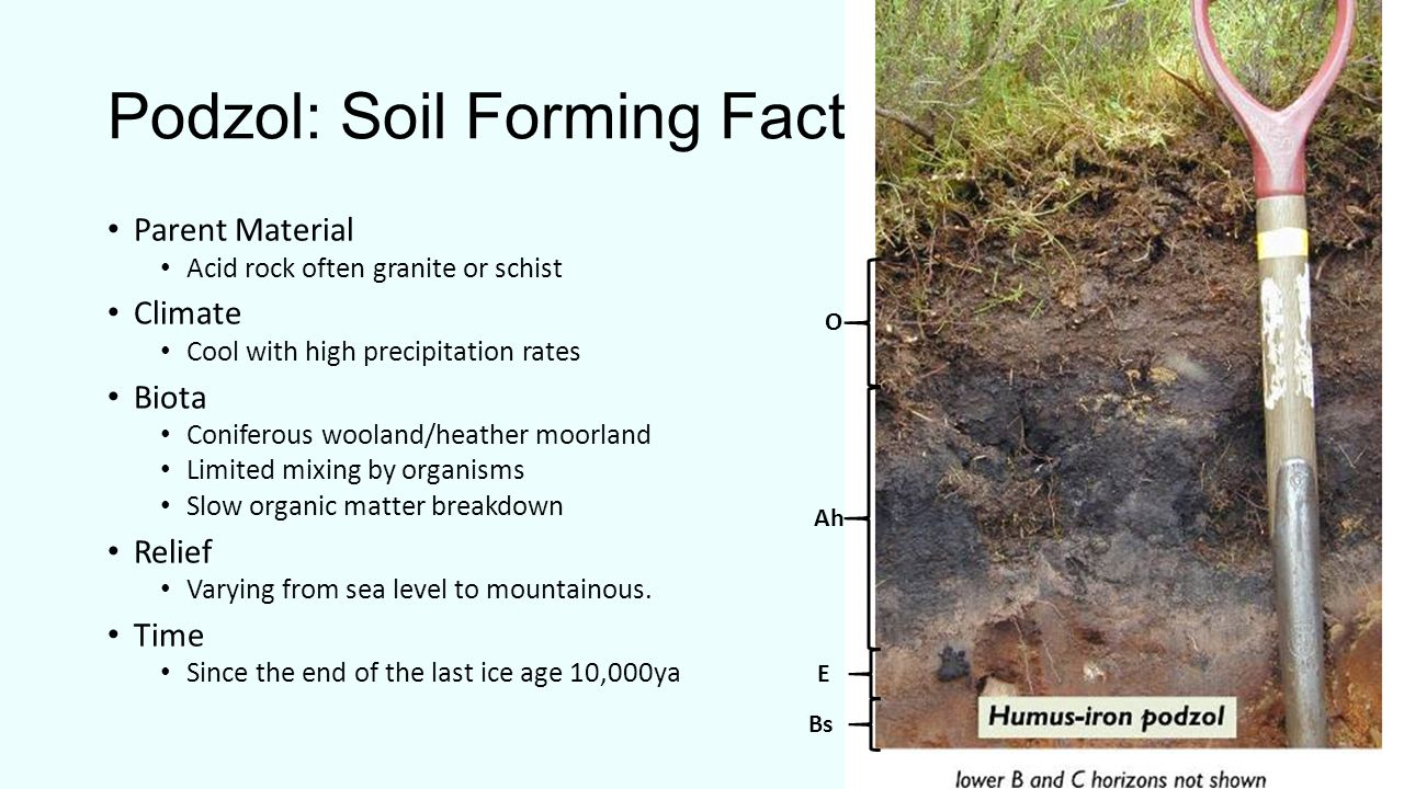What is soil soil is a combination of four main for Soil formation