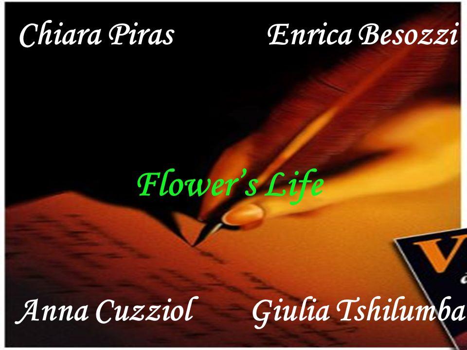 Flower's Life Chiara Piras Enrica Besozzi Anna Cuzziol