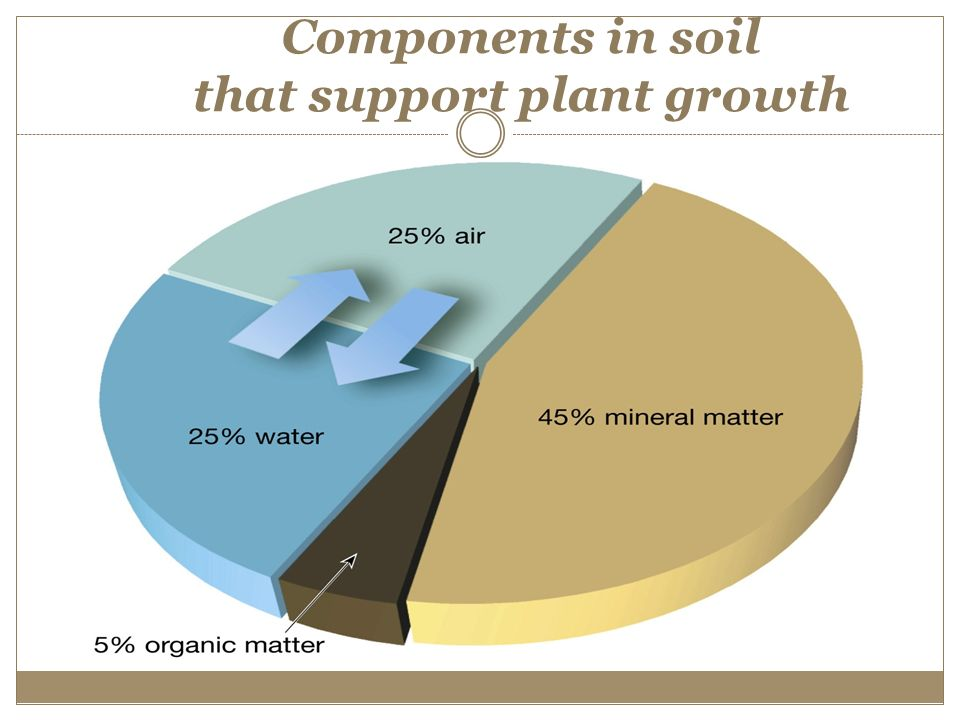Factors and processes of soil formation ppt video online for Soil support