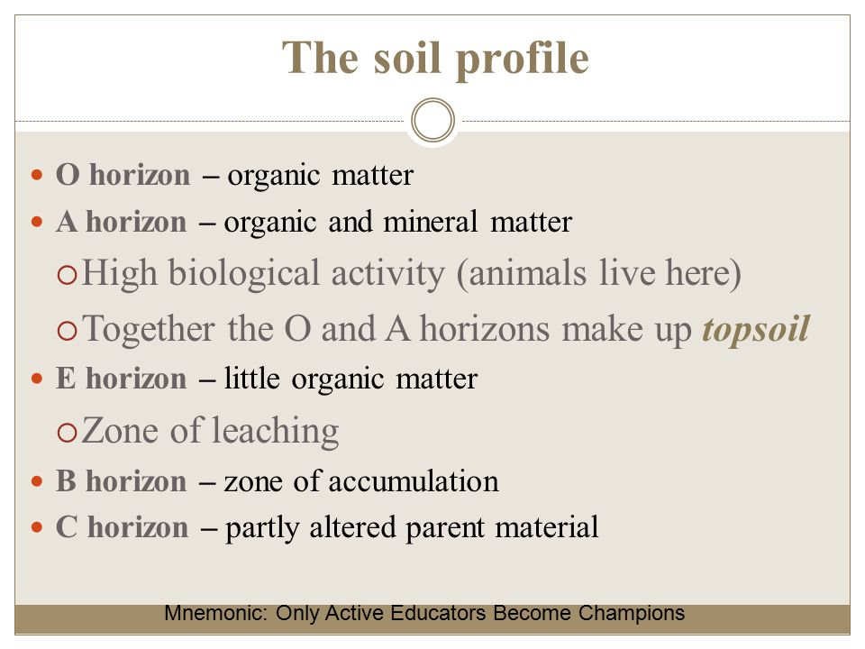 Factors and processes of soil formation ppt video online for Soil zone of accumulation