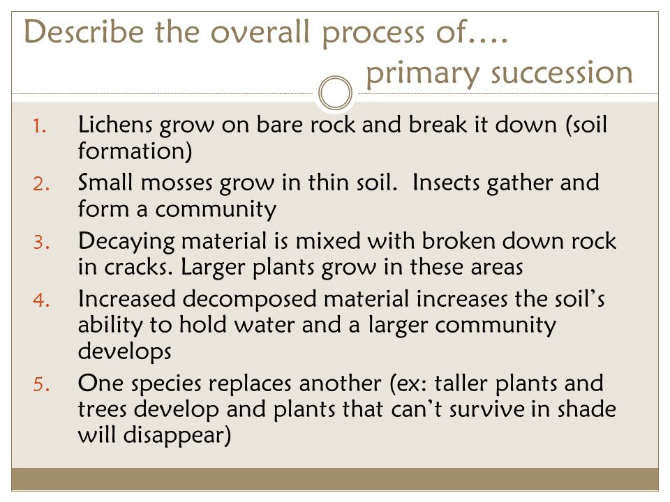 Factors and processes of soil formation ppt video online for Describe soil