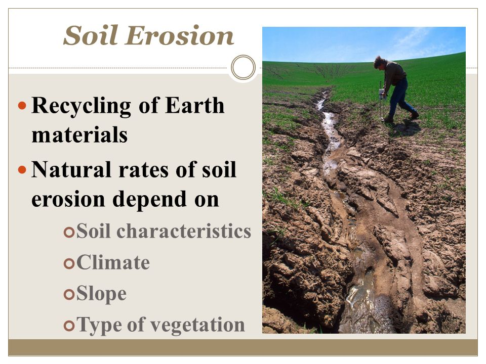 Factors and processes of soil formation ppt video online for What are soil characteristics