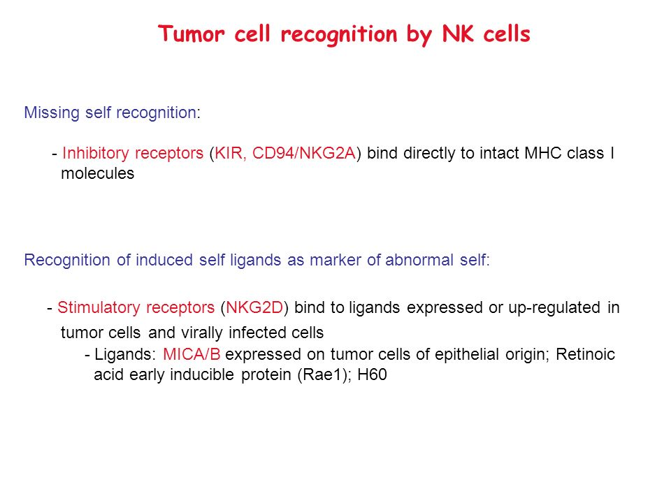 Tumor cell recognition by NK cells