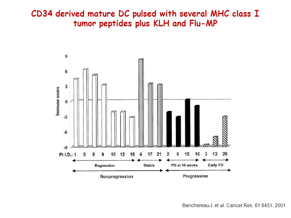 CD34 derived mature DC pulsed with several MHC class I