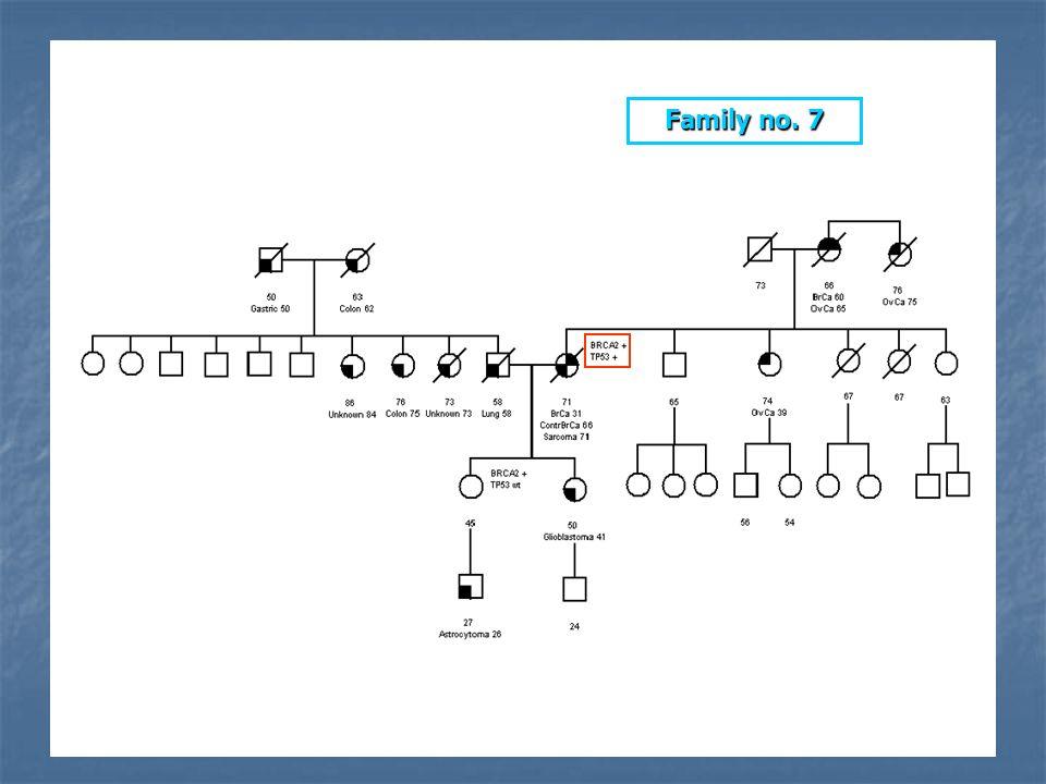 * Family no. 7