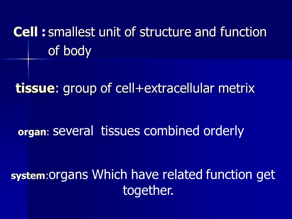 Human Cell Structure And Function Introduction. - ppt vi...