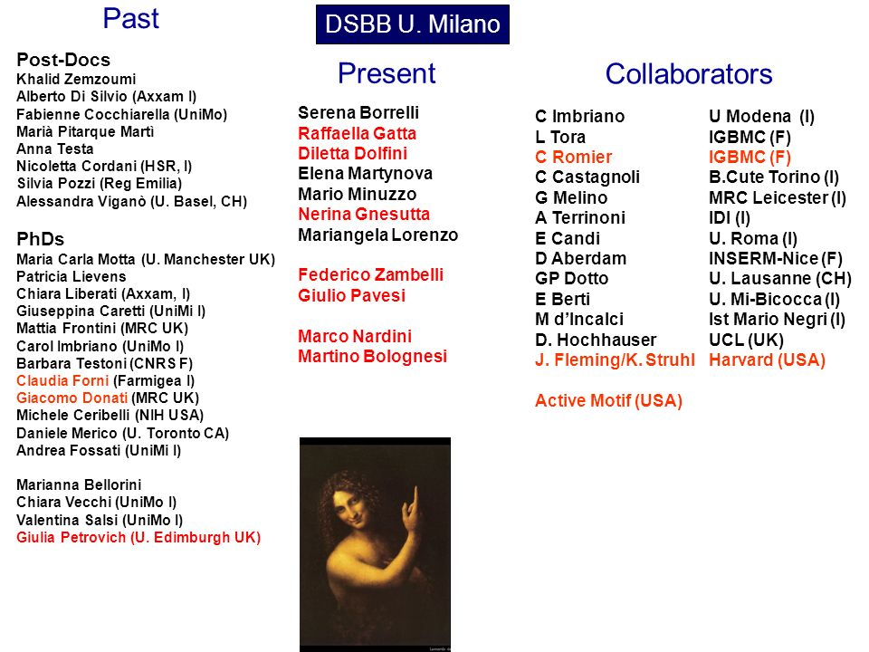 Past Present Collaborators DSBB U. Milano Post-Docs PhDs