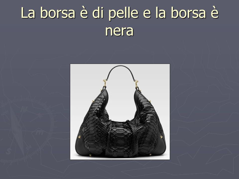 La borsa è di pelle e la borsa è nera