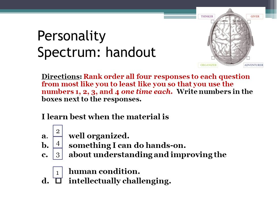 personality spectrum organizer I have taken the personality spectrum assessment i have scored 21 for organizer and adventurer and more about essay on teamwork: dealing with personalities.