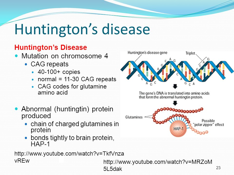 huntintongs disease Huntington's disease (hd) is an inherited disease that causes nerve cells in the brain to waste away it causes disability that gets worse over time.