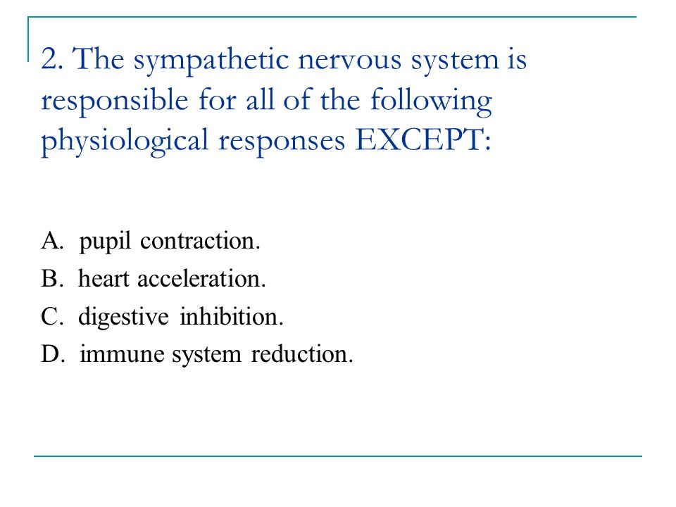2. The sympathetic nervous system is responsible for all of the following physiological responses EXCEPT: