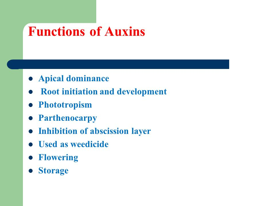 the importance of auxins in plant growth and root formation Auxin is a type of plant hormone involved in the formation of pegs in cucumber seedlings, which are a gravity-related physical trait, that develop between the plant's roots and its stem understanding how plants sense gravity could enable new genetically modified variants that can grow in microgravity.