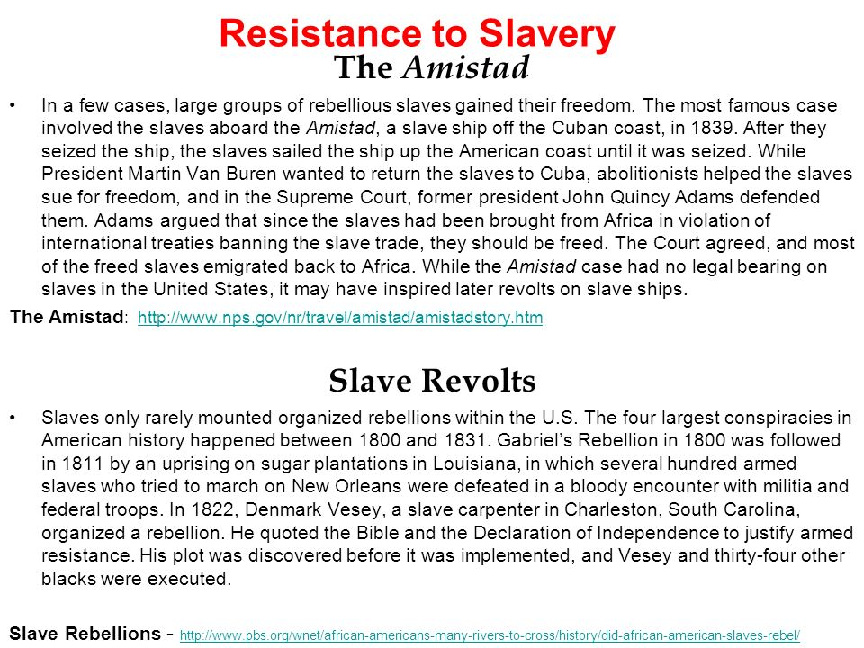 an analysis of the slave revolution on amistad in 1839 Essay an analysis of the slave revolution on amistad in 1839 101 9gagger want to develop an analysis of the styles qualities and roles of leadership a better an analysis oft the all recipes website work routine.