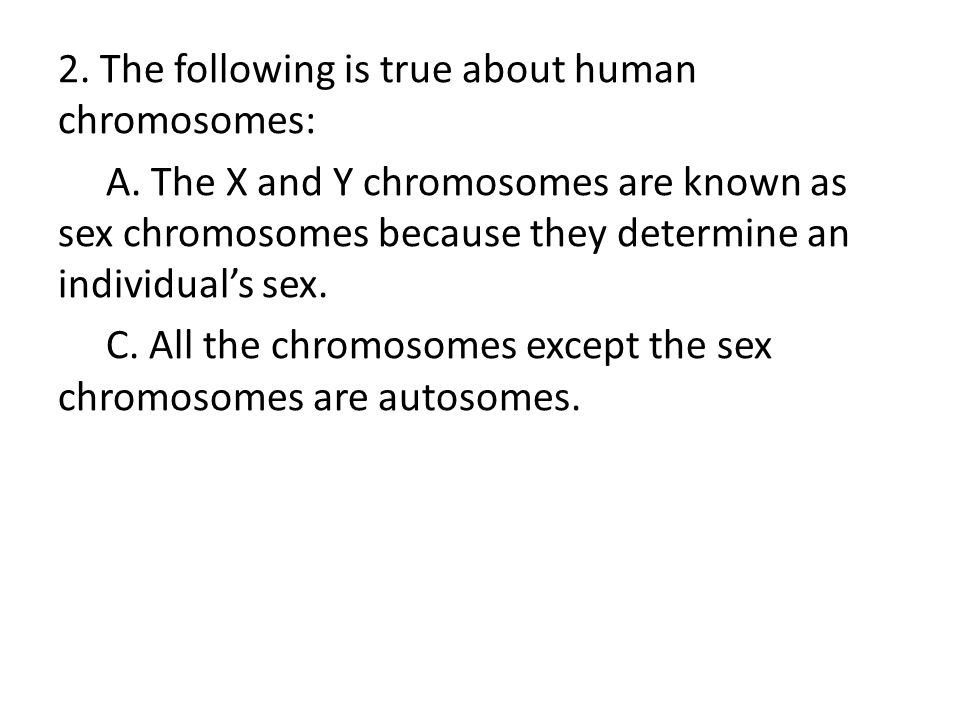 sex chromosomes and autosomes relationship marketing