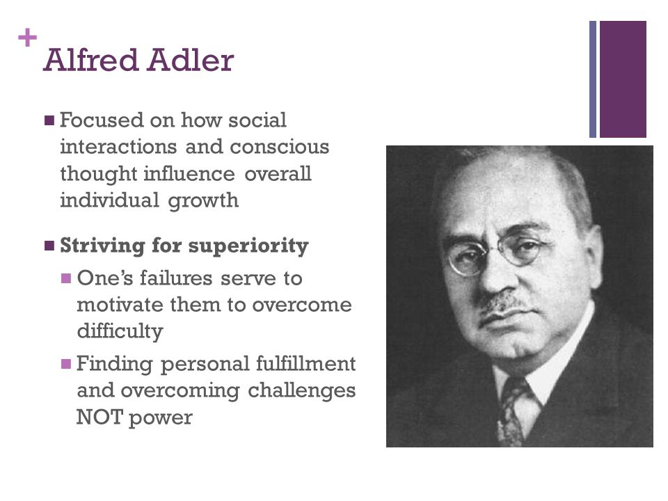 alfred adler s personality theory final