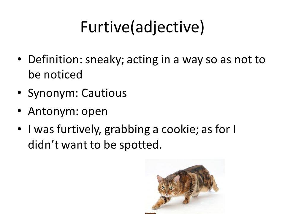 6 Furtive(adjective) ...