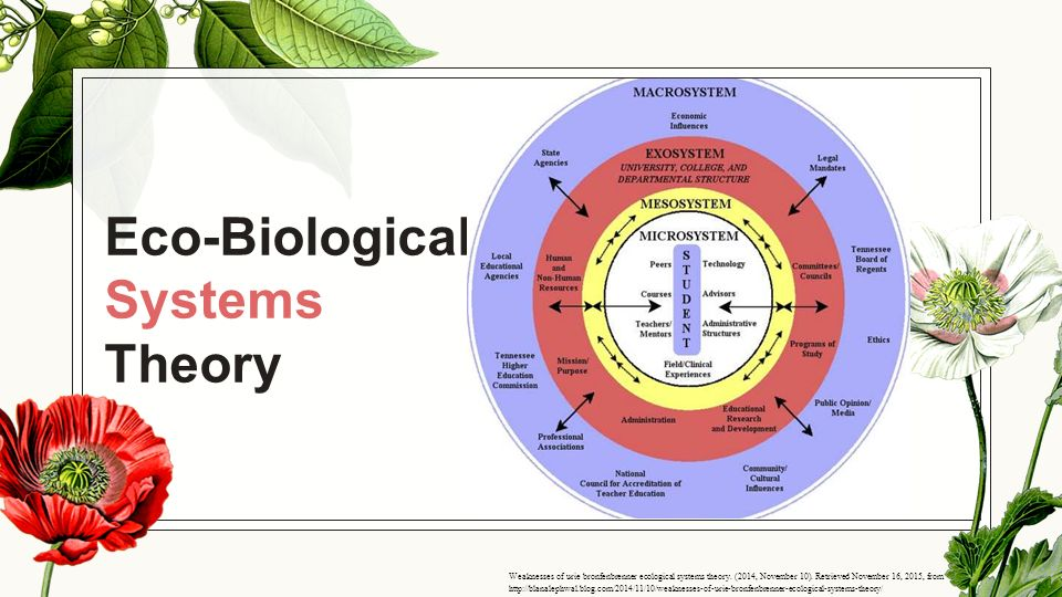 bronfenbrenner theory weakness Explore marie florey's board bronfenbrenner on pinterest | see more ideas  about ecological systems theory, psychology and psych.