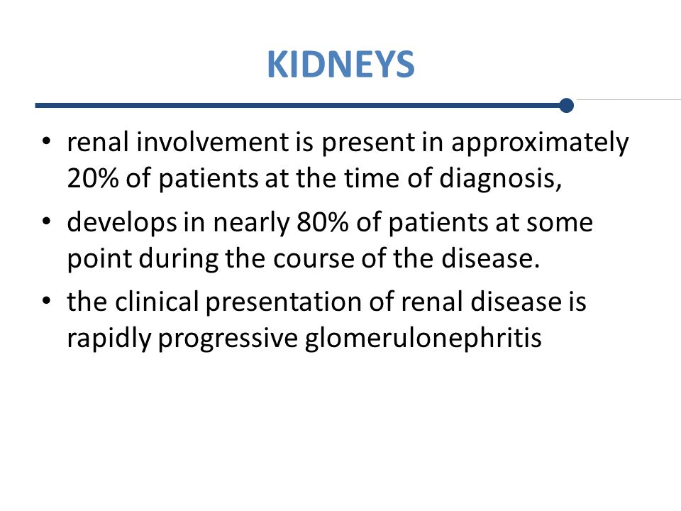 KIDNEYS renal involvement is present in approximately 20% of patients at the time of diagnosis,