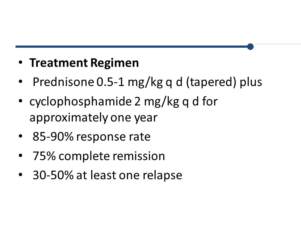 Treatment Regimen Prednisone mg/kg q d (tapered) plus. cyclophosphamide 2 mg/kg q d for approximately one year.