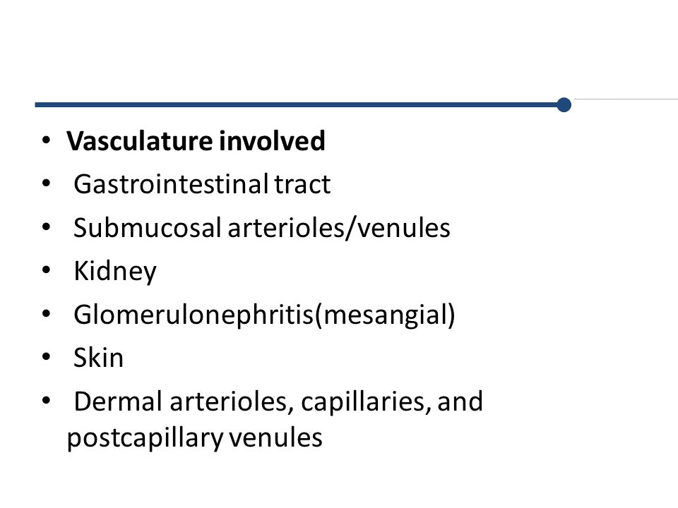 Vasculature involved Gastrointestinal tract. Submucosal arterioles/venules. Kidney. Glomerulonephritis(mesangial)