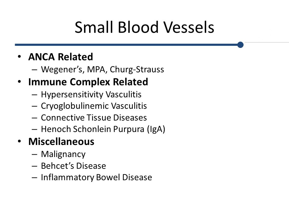 Small Blood Vessels ANCA Related Immune Complex Related Miscellaneous