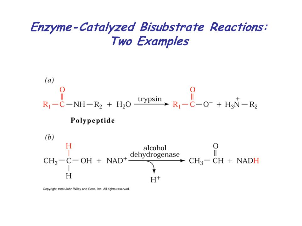 investigating an enzyme catalyzed reaction A substrate is a reactant (other than a catalyst) in a catalysed reaction  an  activator of an enzyme-catalysed reaction may he called an enzyme activator if it   techniques must be used for investigating this phase of the reaction (section 9 .